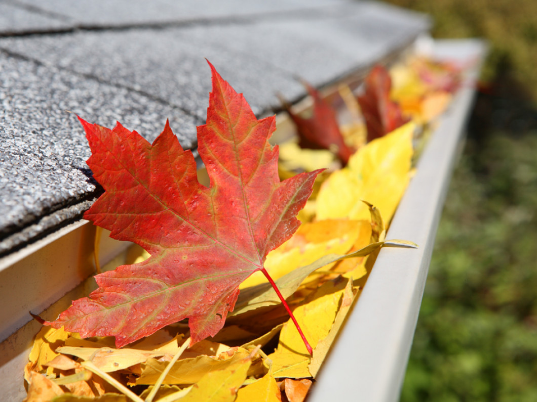 What's wrong with your gutters?